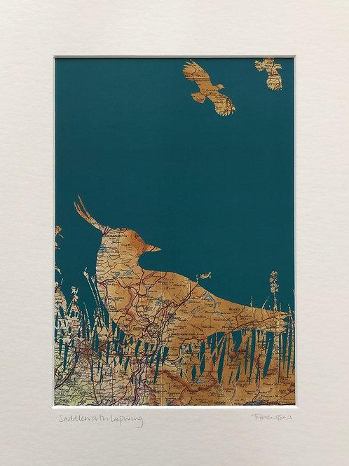 Saddleworth Lapwing A3 Print