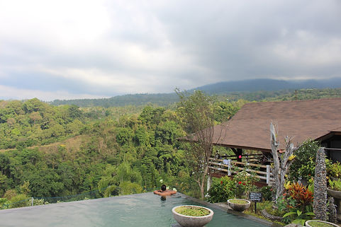Mt Rinjani Lodge view