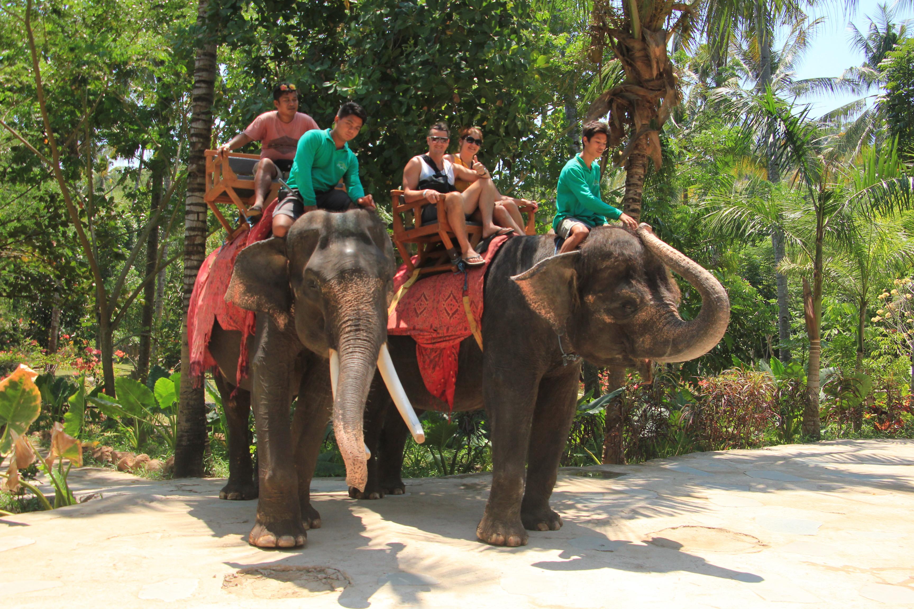 Lombok Elephant Park Trip