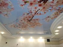 Фотопечать Челябинск, натяжные потолки фотопечать Челябинск, фото на потолок