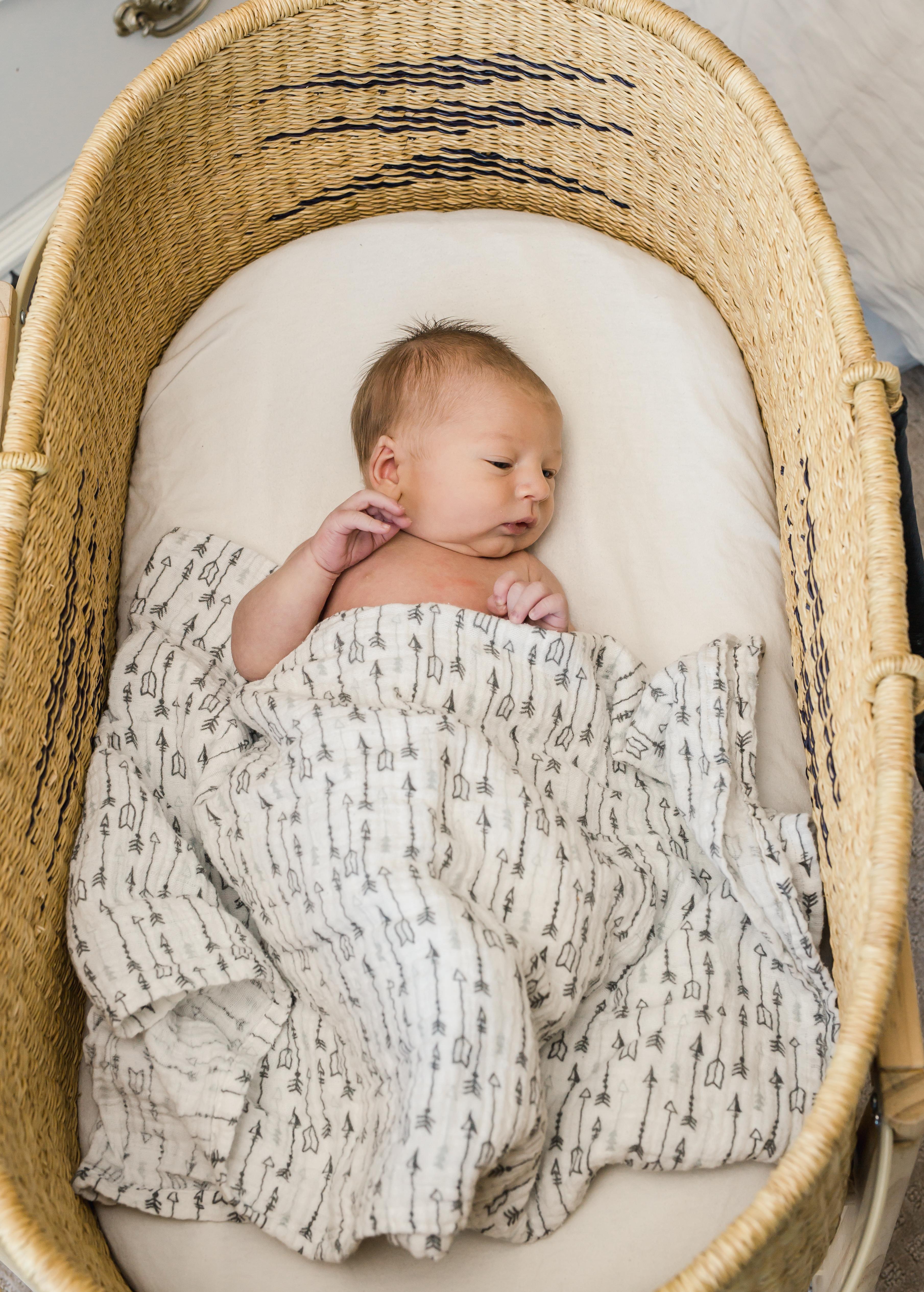 Beau Newborn 2019-211