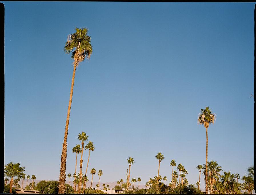 Los Angeles Lala Serrano