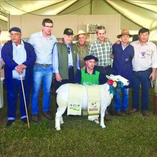 Cabanha Vier conquista tricampeonato na Expointer