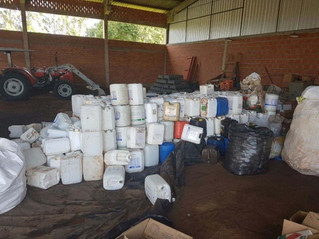 Quase cinco mil embalagens de agrotóxicos são recolhidas em Parecí Novo