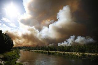 Bombeiros pedem reforço para extinguir incêndio em área de reflorestamento de Cidreira