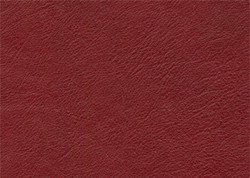 Stargo - Red Delicious_981