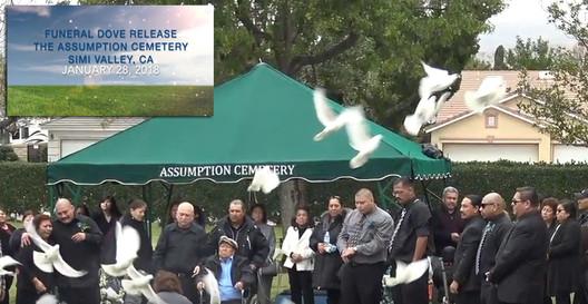 Funeral Dove Release 2-28-18.jpg