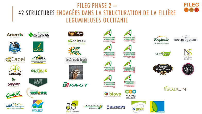FILEG_-_phase_2_-_liste_strucutures_enga