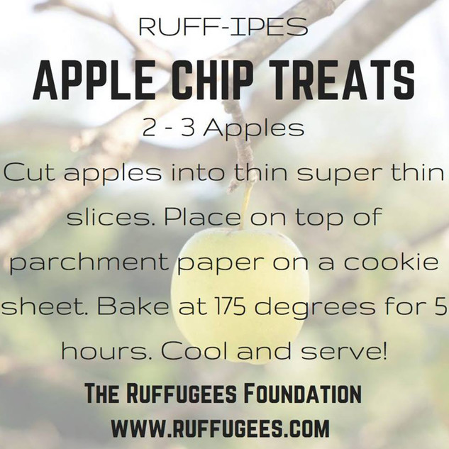 Apple Chip Treats