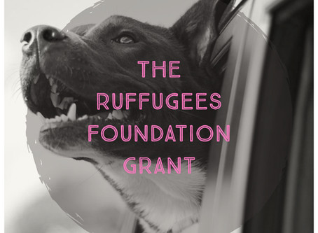 Announcing The Ruffugees Foundation Grant!