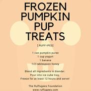 Frozen Pumpkin Treats