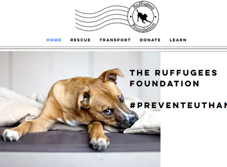 What's New at Ruffugees