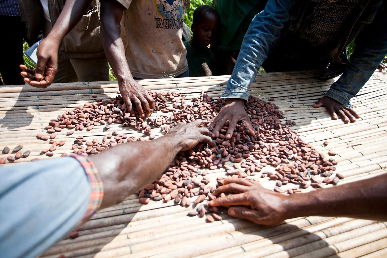 NGO_CSR-CARE-Ivory Coast 006.jpg