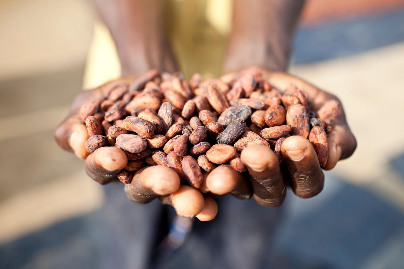 NGO_CSR-CARE-Ivory Coast 002.jpg