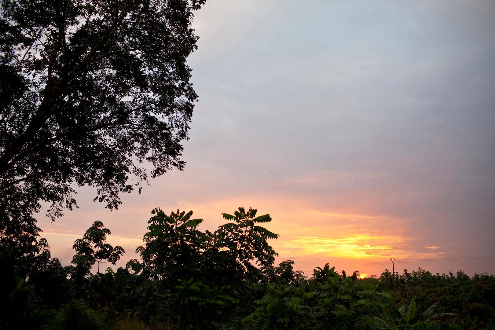 NGO_CSR-CARE-Ivory Coast 001.jpg