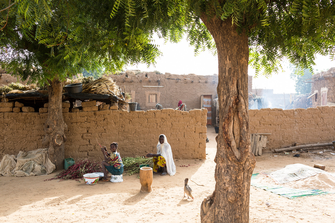 NGO_CSR-CARE-Niger 004.jpg