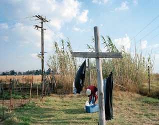 47-The Harvest_Project.jpg