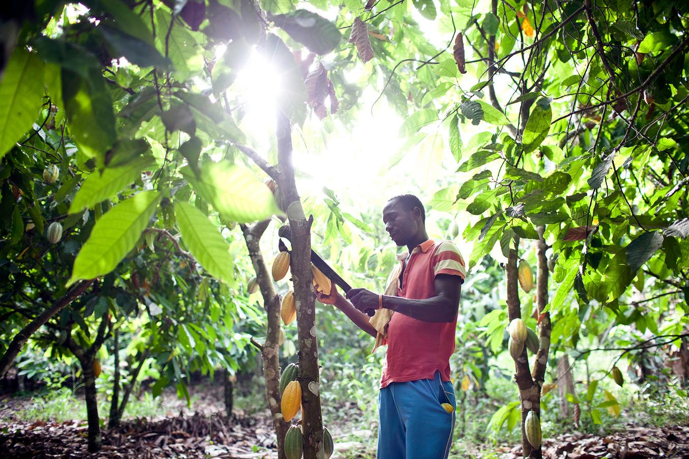 NGO_CSR-CARE-Ghana 026.jpg