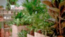 Green Note Laden Mitte-0803.jpg