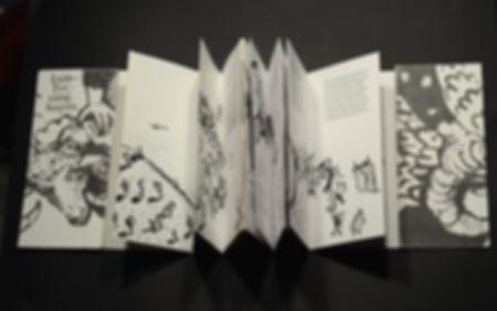 Книжки с картинками