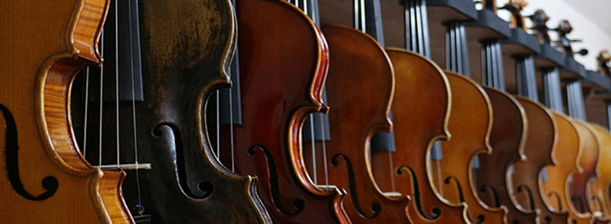 Top-Five-Violin-Brands-for-Beginner-and-