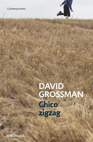 Chico Zigzag - David Grossman