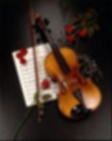 3318f79c2486e2f4b47c4594c9385897--violin