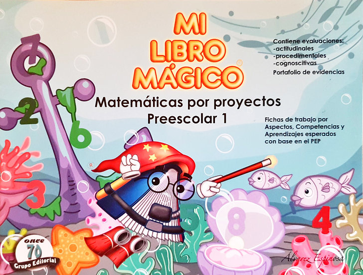 Matemática proyecto 1 - Mi libro mágico