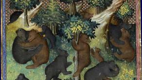 Morte di un re medievale. Come l'orso venne usurpato della sua corona.
