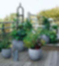 stunning-vegetable-garden 1.jpg