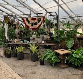 Greenhouse (12) 06 2021.jpg