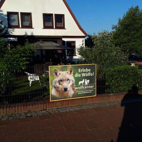 Bei uns ist jeder willkommen, auch der Wolf
