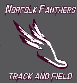 Panther Track & Field / Hooded Sweatshirt