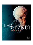 03-310x374-IlhaGrande.png