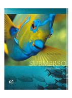 02-285x374-BrasilSubmerso.png