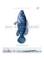 03-310x374-BaiaDeGuanabara.png