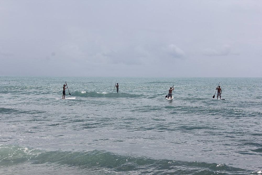 серфинг школа sup.jpg