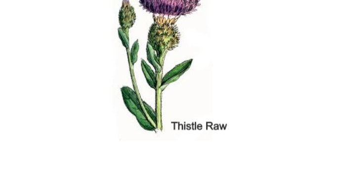 Thistle Raw - Lamb (single protein) complete mince (454g)