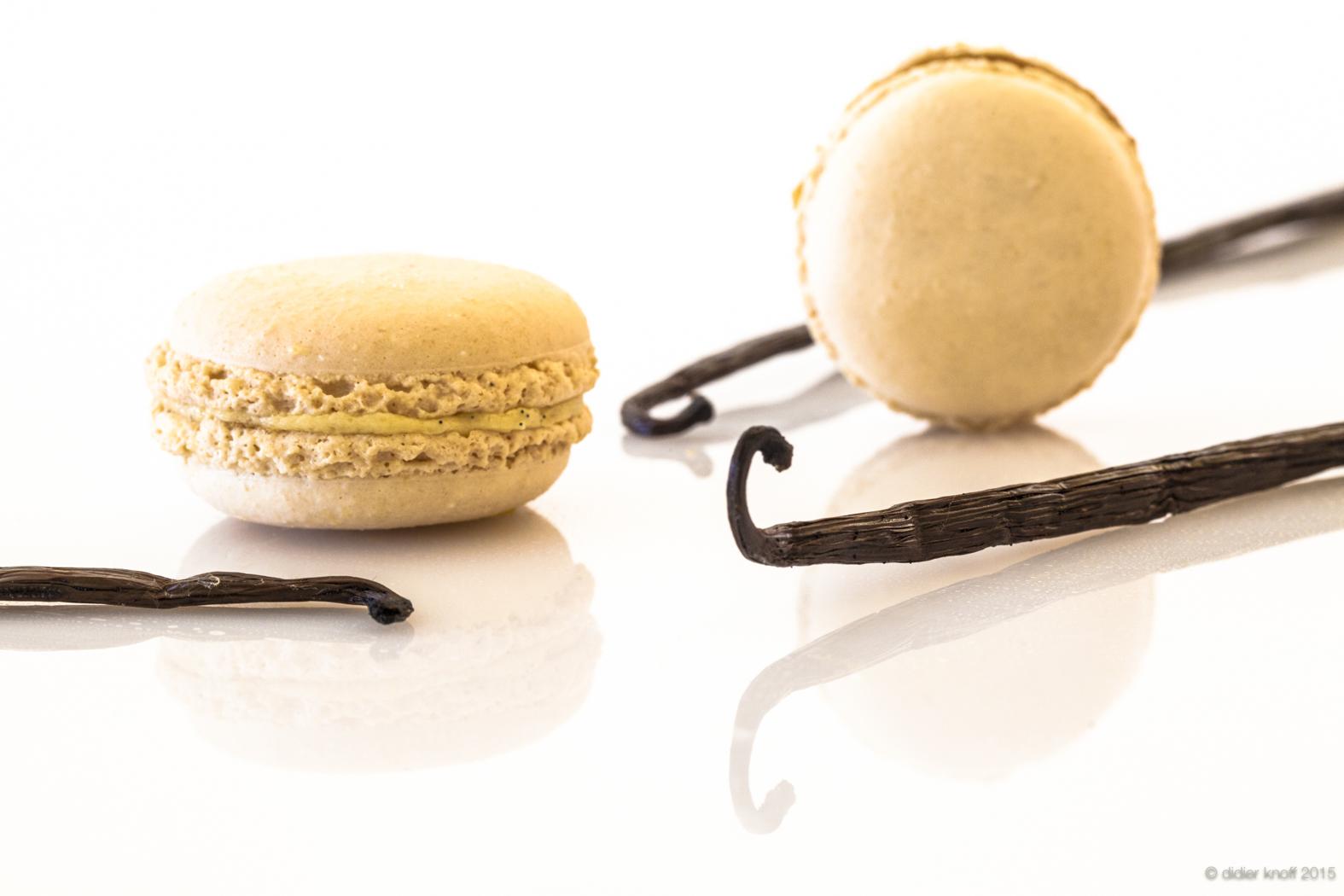 MACARON vanille.jpg