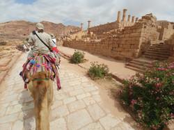 Camel Caravan at Petra