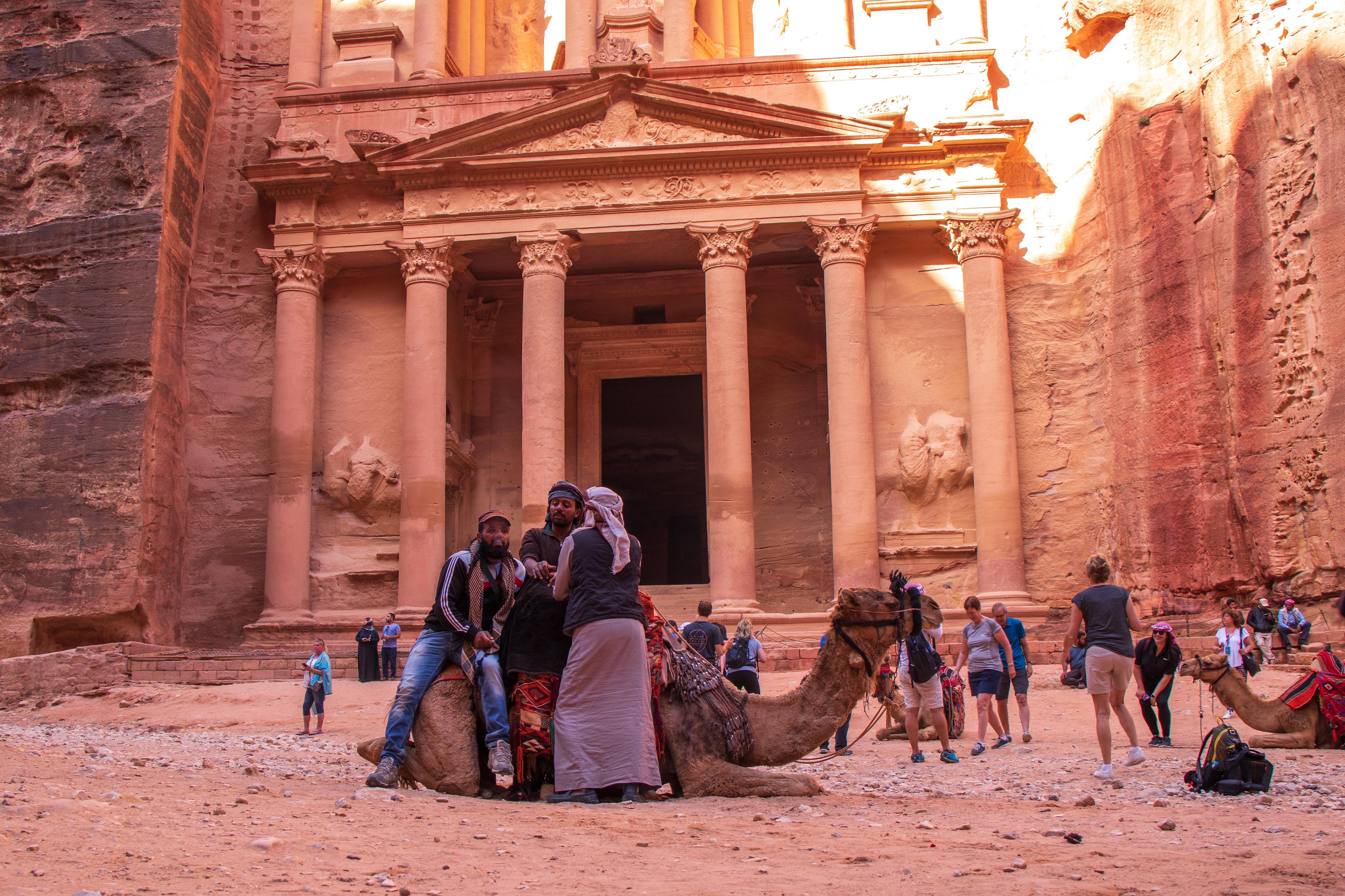 Camels at The Treasury