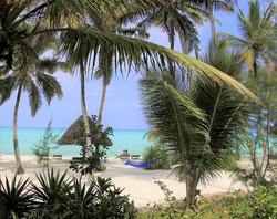 Beautiful Pongwe Beach