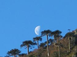 La Luna sobre el Cañi