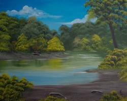 Peaceful Riverbank