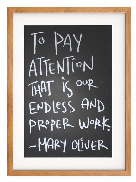 PayAttention-InFrame_edited.jpg