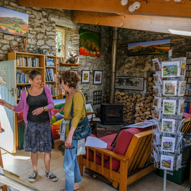 Sue discusses her paintings