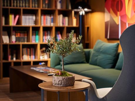 NTN Partners Ofis Lounge Alanı