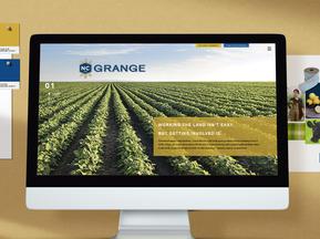 Logo and Website Rebranding