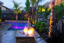 Gunite Pool w/ Firepit and Enhanced Tropical Landscaping Package