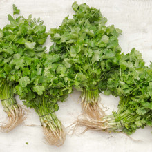 Befriend everyday kitchen herbs in brand new ways to benefit from them more deeply